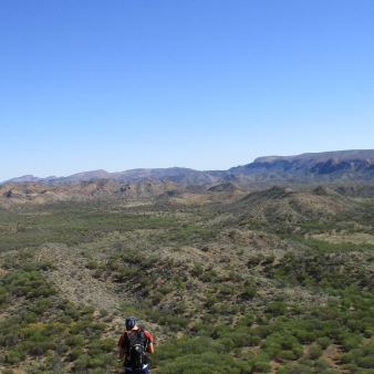 In the Spinifex grass of the Australian Outback